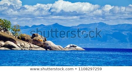 Kaart meer Malawi achtergrond lijn Stockfoto © rbiedermann