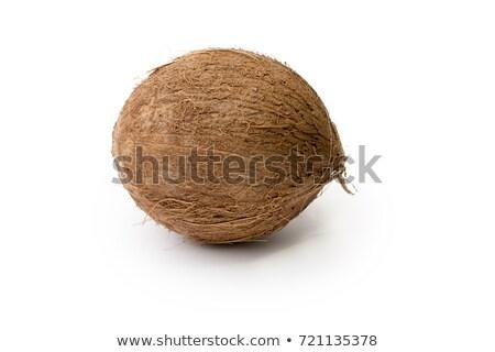 Single coconut Stock photo © alrisha