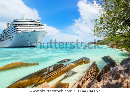 cruzeiro · mar · grande · navio · de · cruzeiro · água - foto stock © alphaspirit