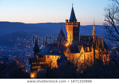 tower of castle wernigerode Stock photo © compuinfoto