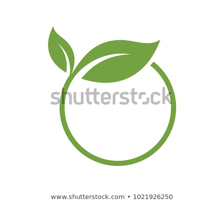 round icons with leaves stock photo © bluering