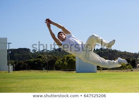 Críquete bola verde típico materialismo Foto stock © Bigalbaloo
