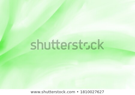Abstract Green Backround Stock photo © molaruso