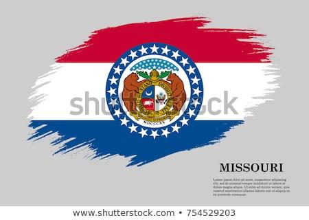 USA Missouri pavillon blanche 3d illustration texture Photo stock © tussik