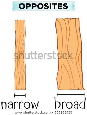 Tegenover woorden smal hout natuur achtergrond Stockfoto © bluering