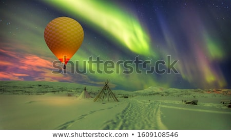 spectacular northern lights aurora borealis over snowscape stock photo © meinzahn