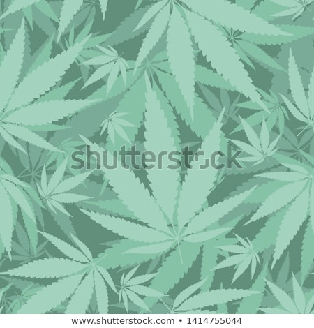 cannabis leaf seamless pattern stock photo © pashabo