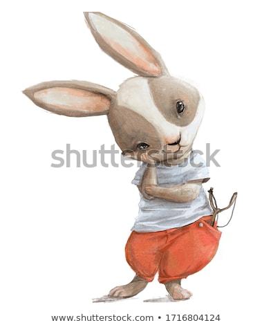 Cute lächelnd Hase Karikatur Illustration Stock foto © vectorikart