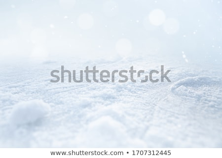 Ice cold beauty. Stock photo © Fisher