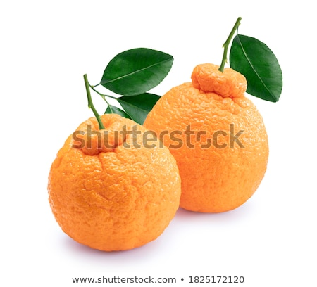 Rebanadas frescos mandarina tazón blanco frutas Foto stock © Digifoodstock