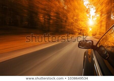 kadın · eller · araba · direksiyon · sürücü · araç - stok fotoğraf © stevanovicigor