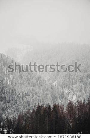 nieve · montanas · nubes · de · tormenta · cáucaso · Georgia · vista - foto stock © is2