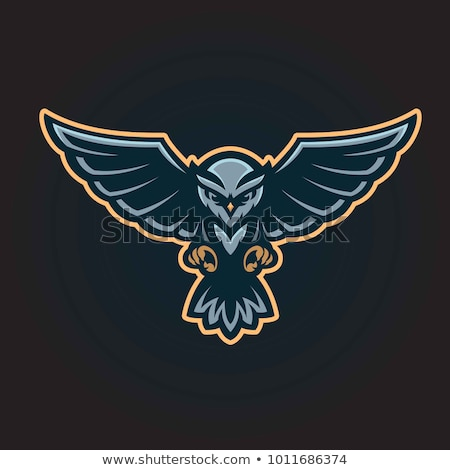 owl mascot head character illustration vector stock photo © andrei_