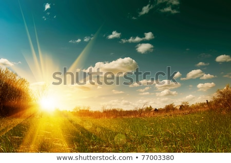 Sunrise rurale Australia sensazionale riflessioni Foto d'archivio © lovleah