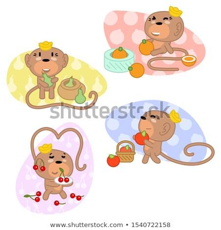 Kabala majom narancs vitamin illusztráció aranyos Stock fotó © lenm