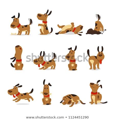 bonitinho · desenho · animado · cães · filhotes · de · cachorro · conjunto · ilustração - foto stock © izakowski