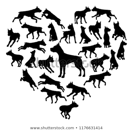 Staffy Dog Heart Silhouette Concept Stock photo © Krisdog