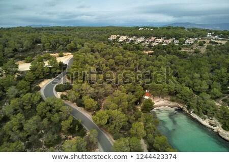 海岸 · 道路 · コルシカ島 · ターコイズ · 地中海 · 海 - ストックフォト © amok