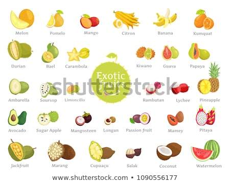 Melon passion fruits tropicales affiches Photo stock © robuart