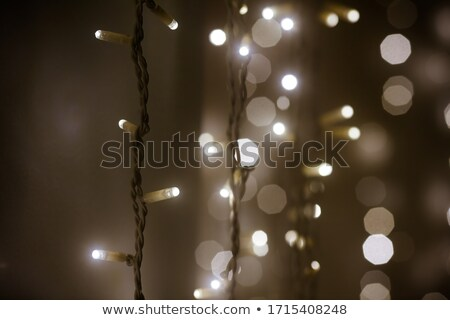 LED lights garland, colorful light bulbs on a bokeh background Stock photo © galitskaya