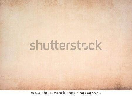 Brown Grungy Wall ストックフォト © ilolab
