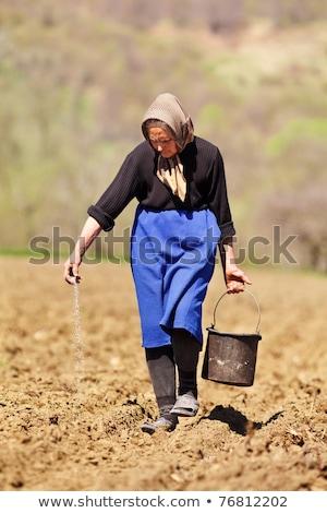Gazda nő vetés magok mező gazdálkodás Stock fotó © robuart