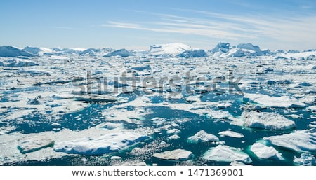 Climate Change and Global Warming - Icebergs from melting glacier on Greenland Stock photo © Maridav