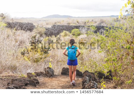 Galapagos Isabela island travel tourist, El Muro de las Lagrimas Puerto Villamil Stock photo © Maridav
