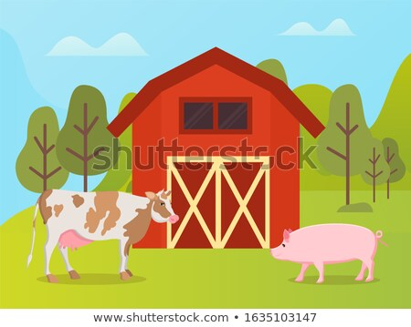 Livestock Animals Cow and Pig Near Warehouse Stock photo © robuart