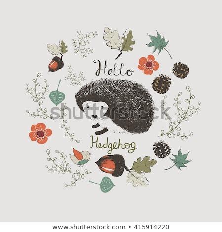 Hello tavasz kézzel rajzolt rajz firkák illusztráció Stock fotó © balabolka