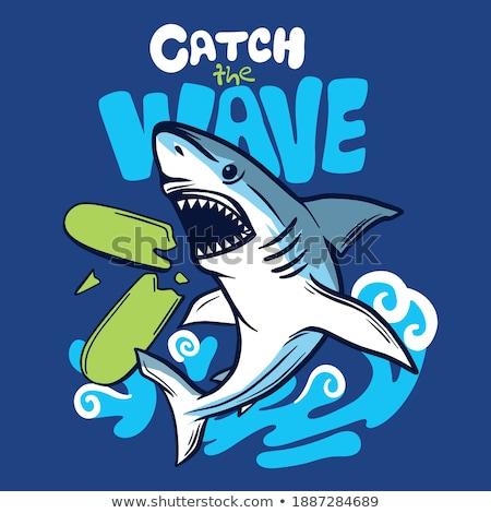 Fiú halászat baba cápa rajzfilmfigura zsákmány Stock fotó © bluering