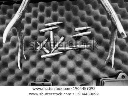 Large-caliber cartridge on a dark background  Stock photo © bezikus