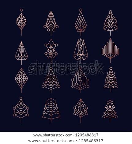 Cobre Navidad pino geometría establecer Foto stock © cienpies