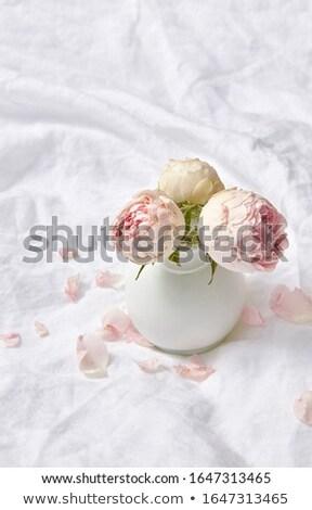 Bouquet tendre rose roses fleurs lit Photo stock © artjazz