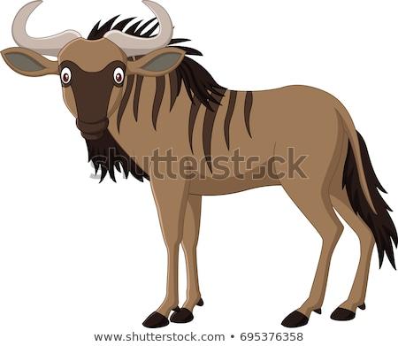 gnu antelope or wildebeest cartoon animal character Stock photo © izakowski