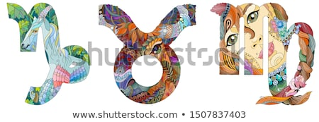 Capricorn, virgo and taurus Stock photo © anastasiya_popov