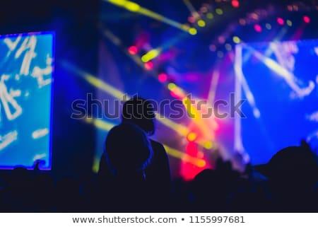 Sziluett nagy tömeg koncert színpad éjszaka Stock fotó © galitskaya