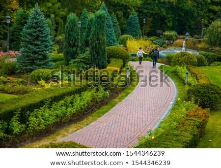 happy couple spreading hands leaves in autumn park Stock photo © dolgachov