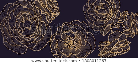 Peony flowers as luxury floral background, wedding decoration and event branding Stock photo © Anneleven