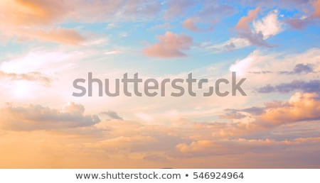 beautiful sunrise with soft clouds stock photo © meinzahn