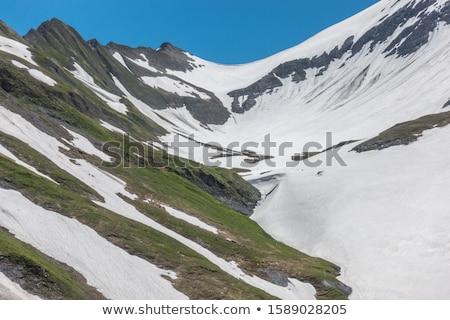春 風景 雪 林間の空き地 美しい ストックフォト © Kotenko