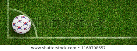 Futebol Coréia do Sul cores grama futebol verde Foto stock © wavebreak_media