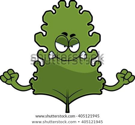 Angry Cartoon Kale Leaf Stock photo © cthoman