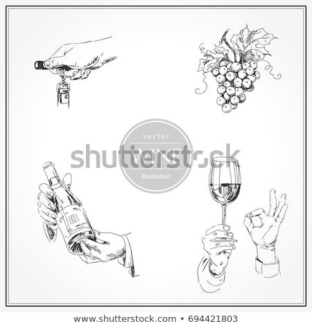 Handen wijnproeven fles glas illustratie Stockfoto © lenm