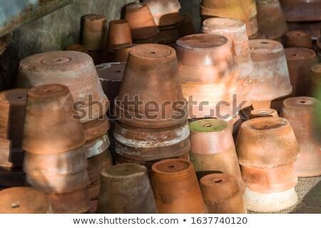 Old Plant Pot Stock photo © HJpix