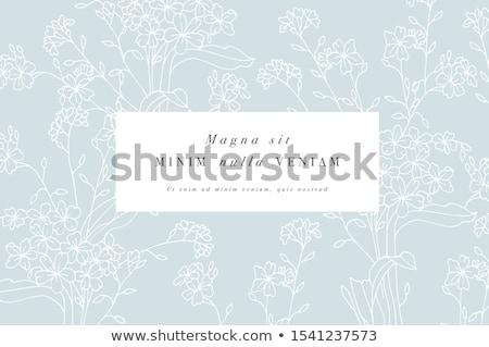 Romantik güzellik Retro kart dikkat Stok fotoğraf © balasoiu