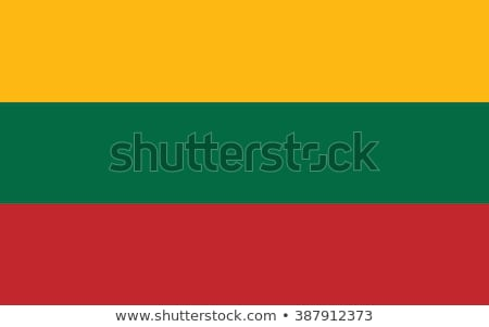 flag of Lithuanian Stock photo © mayboro