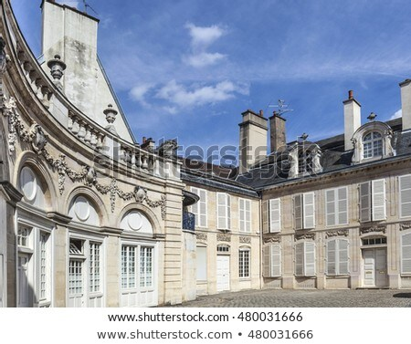 Palace of Dukes of Burgundy (Palais des ducs de Bourgogne) in Di Stock photo © meinzahn