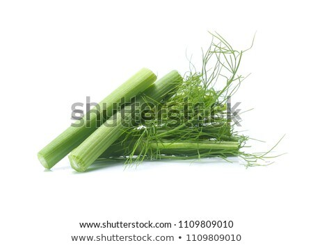 fresh fennel bulbs Stock photo © Digifoodstock