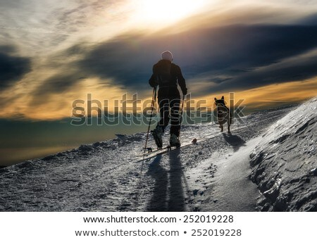 Mountaineer with dog climbing on mountain top Stock photo © vapi